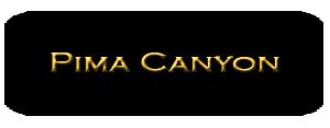 Search Pima Canyon Homes