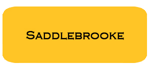 July '16 Saddlebrooke Housing Report