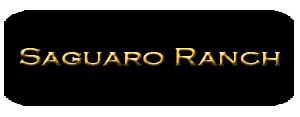 Search Saguaro Ranch Homes