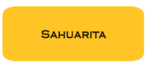 May '16 Sahuarita Housing Report