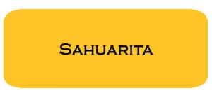 May '15 Sahuarita Housing Report