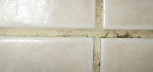 Grout Picture