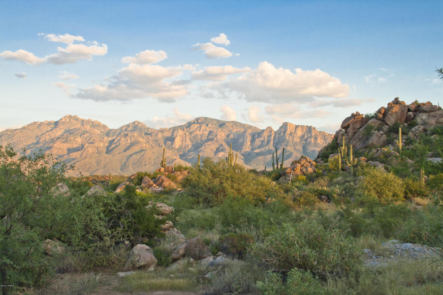 Choosing a Custom Home Lot in Tucson, pt. 1